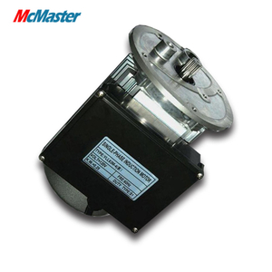 BAM96-4 series Single Phase Asynchronous Electric AC Motor For Food Processor 250 W