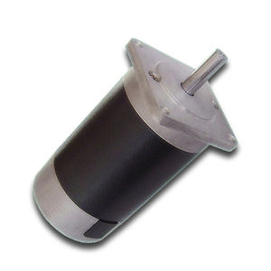 57mm High Speed High Torque 3000rpm 40w 12v 24V Electric Dc Motor MM306